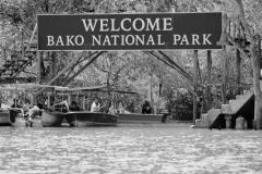 Bako_National_Park2