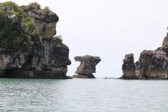Bako_National_Park20