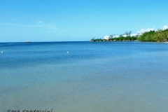 Jamaica-travelgallery-Sara-Spadaccini-1