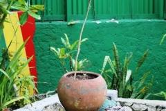 Jamaica-travelgallery-Sara-Spadaccini-13
