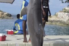Jamaica-travelgallery-Sara-Spadaccini-17