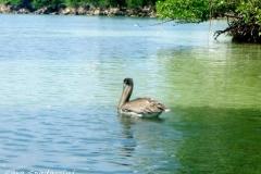 Jamaica-travelgallery-Sara-Spadaccini-26