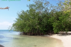 Jamaica-travelgallery-Sara-Spadaccini-30
