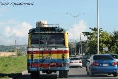 Jamaica-travelgallery-Sara-Spadaccini-6