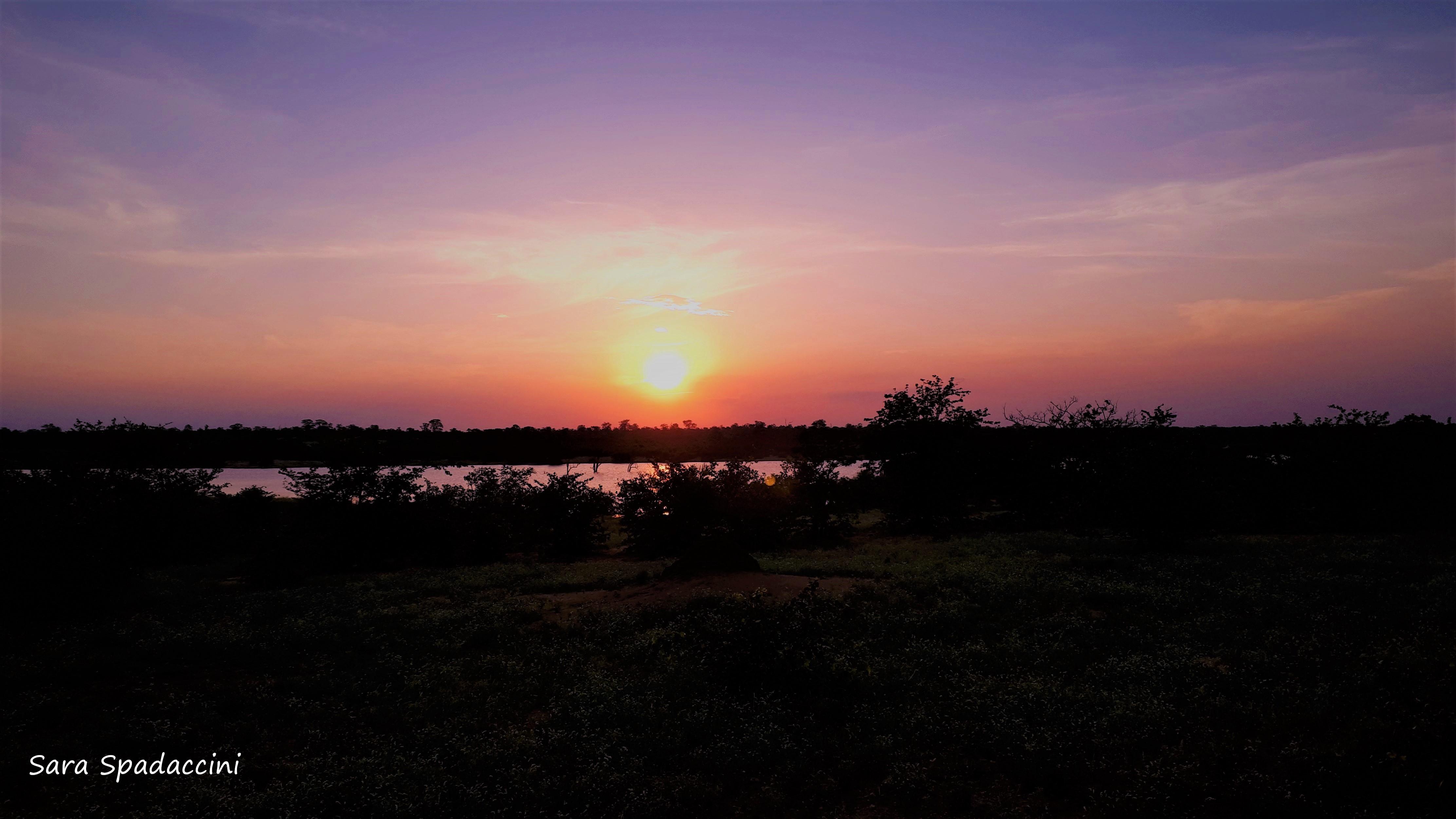 Kruger Park (43)