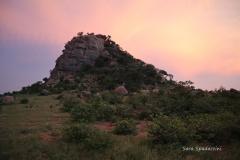 Kruger Park (42)