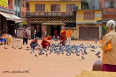 Nepal Travelgallery Sara Spadaccini (23) (800x533)