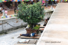Nepal Travelgallery Sara Spadaccini (29) (800x533)