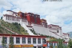 Tibet Sara 2017 (1)