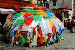 Tibet Sara 2017 (14)