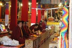 Tibet Sara 2017 (2)