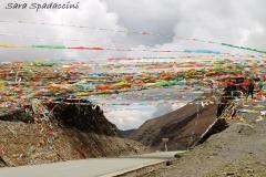 Tibet Sara 2017 (21)