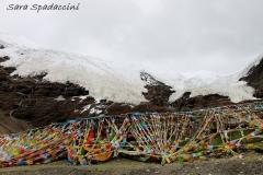 Tibet Sara 2017 (22)