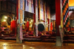 Tibet Sara 2017 (25)