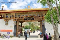 Tibet Sara 2017 (3)