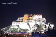 Tibet Sara 2017 (7)