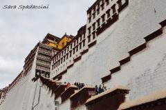 Tibet Sara 2017 (8)