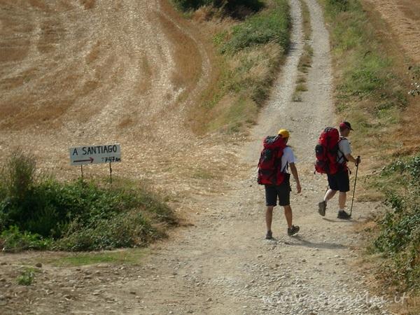 Cammino di Santiago: Zubiri-Pamplona