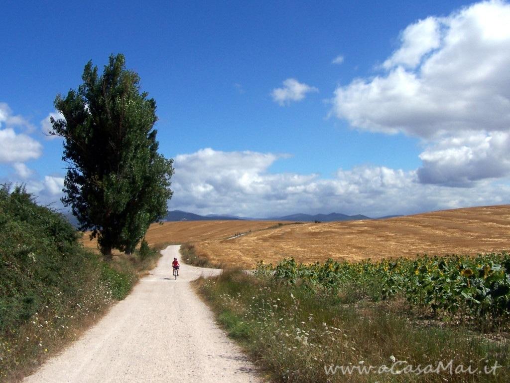 Cammino di Santiago: Pamplona-Puente la Reina