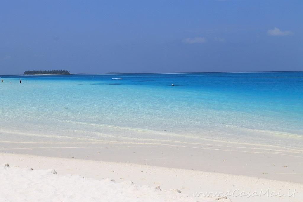 Maldive #gallery