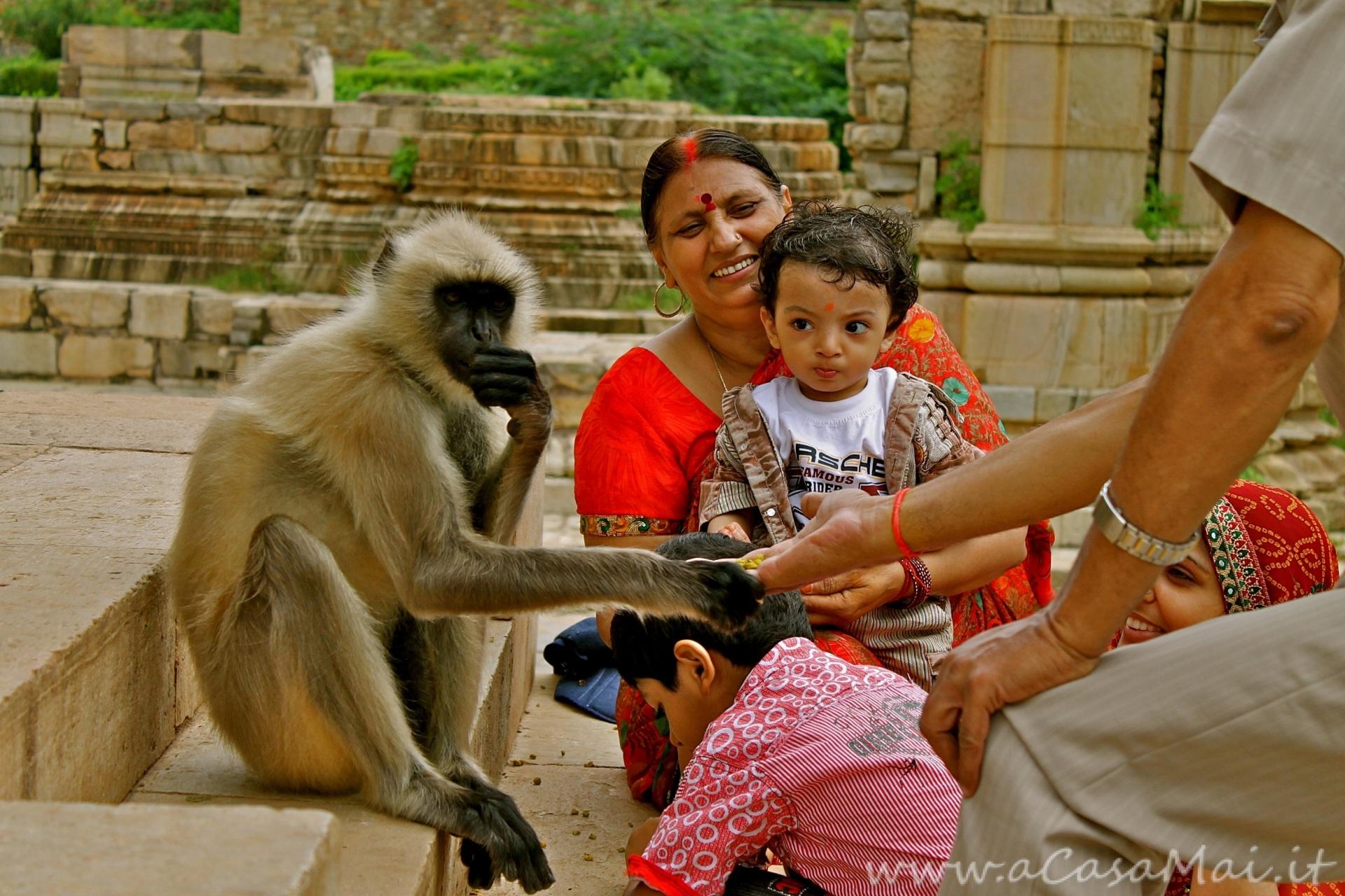 famiglia di credenti a Chittorgarh