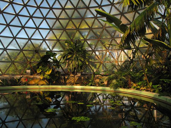 how to make a tropical garden brisbane