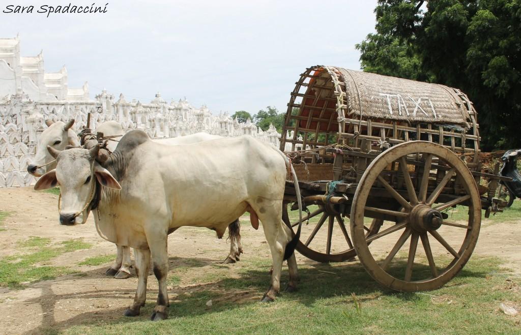 Nono giorno in Myanmar: visita alla antica capitale Mingun!!!