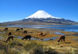 Cile, le Ande