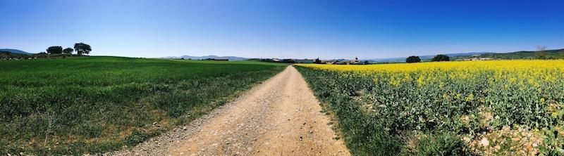 La Navarra, regione in cui inizia il Cammino di Santiago nel Cammino Francese