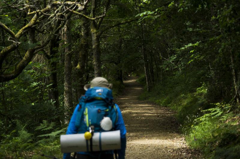 Il cammino primitivo parte da Oviedo fino a Santiago