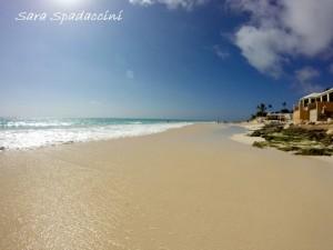 vacanze ad aprile Bermuda 1