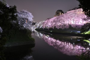 vacanze ad aprile tokyo 2