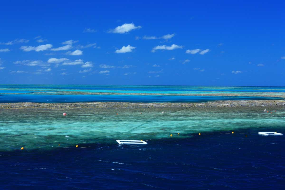 Grande Barriera Corallina - foto Alessia