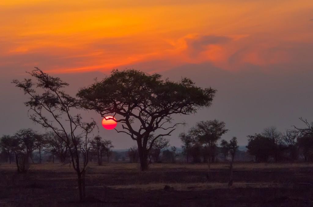 vacanze ad agosto - tanzania 1