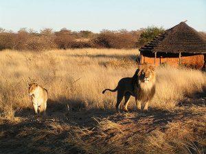 Namibia2.vacanze a settembre