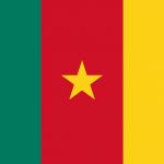 Camerun Bandiera