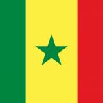 Senegal Bandiera