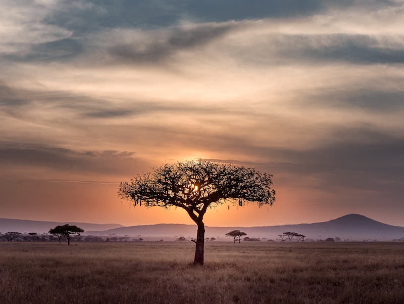 Paesi africani