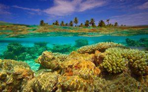 Vacanze Alle Maldive 14