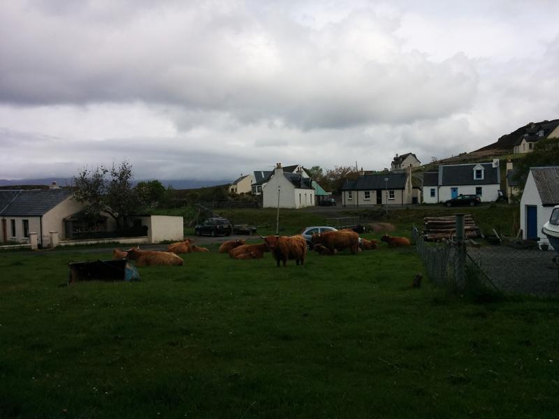 Viaggio In Scozia Duirinish 2