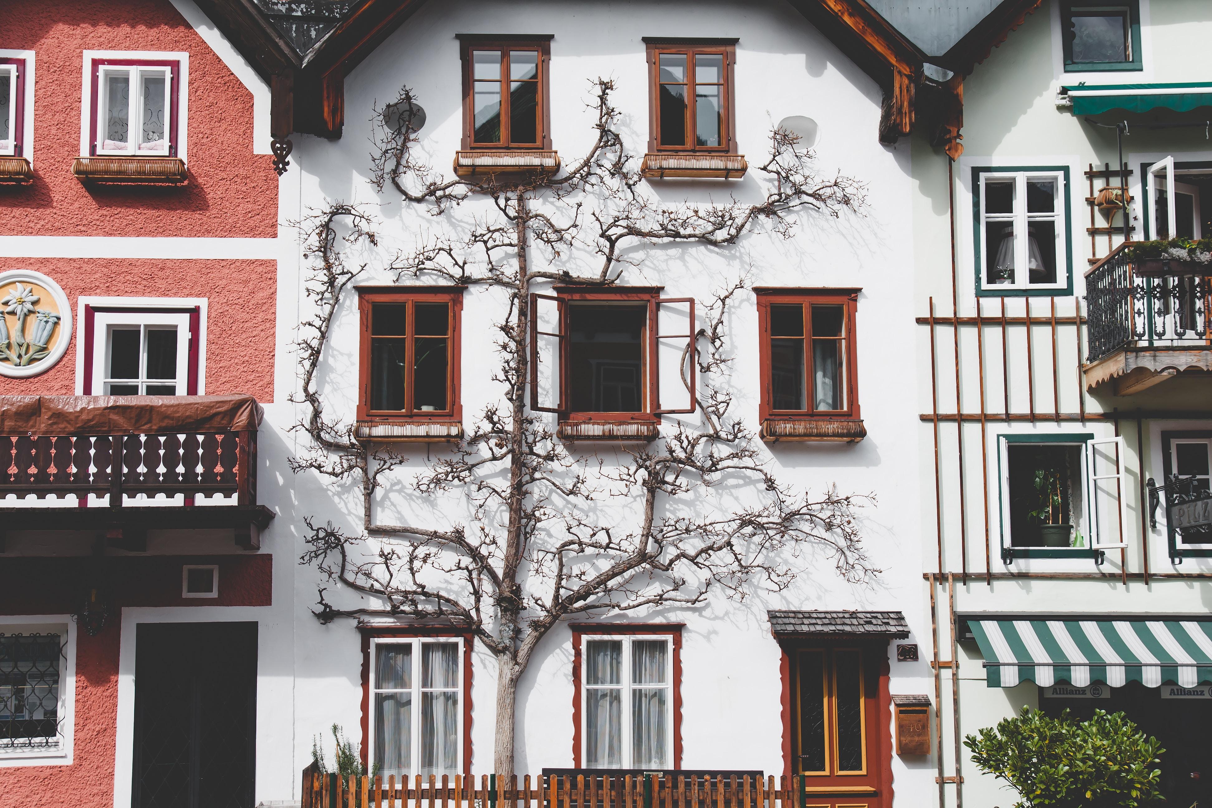 Scopri le bellezze dell'Austria con la sua cartina geografica